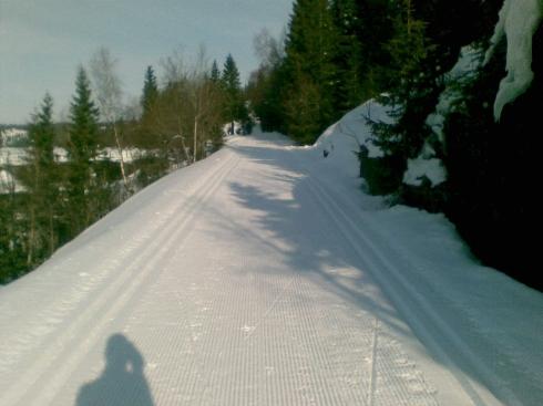 Coq à la crète noire tracks at Søndre Heggelivann